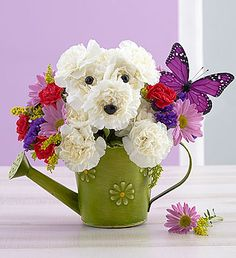 Playful Pup™  EXCLUSIVE Who's that peeking out from a charming daisy watering can? It's a mischievous member of our truly original a-DOG-able® Collection! With a colorful butterfly hovering just over his shoulder, this playful pup is sure to make someone special smile!
