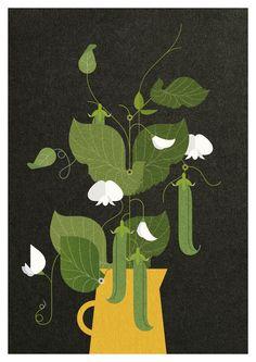 jpg by Folio Illustration Agency Illustration Blume, Botanical Illustration, Graphic Illustration, Botanical Drawings, Botanical Art, Lino Art, Business Illustration, Oeuvre D'art, Art Pictures