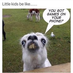 I stole this. #neice #funny #true #games #ios #android http://unirazzi.com/ipost/1511508739663015958/?code=BT59TC-gzAW