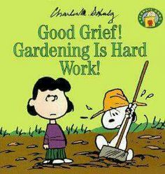 Looks like Snoopy is the only one working.