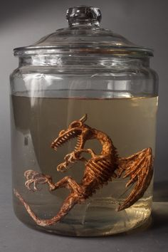 dragon specimen