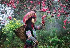 Spring in Yen Bai, Vietnam Photo by Dat Nguyen — National Geographic Your Shot