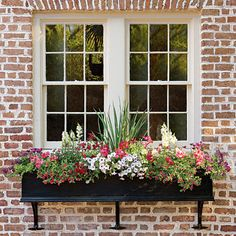Painters Spring Tips: Window Boxes southernliving.com