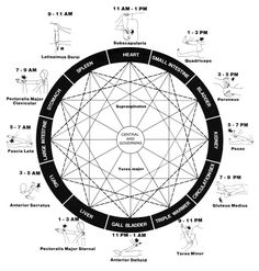 Meridian clock with corresponding times, meridians, and even location within the body for you to work on for the healing. Take time out of the day within each area and do one simple healing exercise for your meridian flow patterns and see how this can shift this area of energy & also for your chakra energy patterns!  http://www.healingartforms.com/