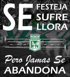 Se Festeja, Se Sufre, Se Llora, Pero Jamás Se Abandona Club, Metallica, Movies, Movie Posters, Instagram, Football Team, Sports, Allegiant, Colombia