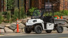 2016 GEM eM1400 LSV - Street Legal Electric Utility : not drool worthy per se, but a street legal golf cart... Pretty cool