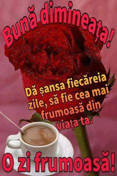 Imagini buni dimineata si o zi frumoasa pentru tine! - BunaDimineataImagini.ro Floral, Florals, Flower, Flowers