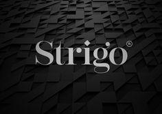 Strigo Apparel Branding by Memo & Moi