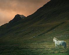 La beauté des chevaux islandais capturée dans de sublimes photographies | Buzzly