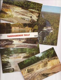 Tahquamenon Falls, Michigan Upper Peninsula, vintage postcards 1958