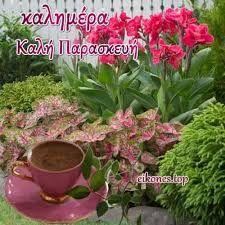 Flowers Gif, Plants, Google, Greek, Plant, Greece, Planets