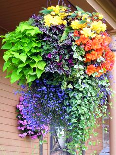 9 Creative And Inexpensive Ideas: Artificial Plants Wall Indoor outdoor artificial plants hanging baskets.Clean Artificial Plants How To artificial flowers diy. Plants For Hanging Baskets, Hanging Herbs, Hanging Flowers, Hanging Planters, Diy Hanging, Hanging Plants Outdoor, Hanging Gardens, Fall Planters, Patio Plants