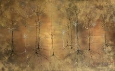 Cortical Sunburst - Greg Dunn