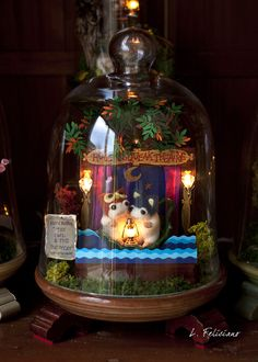 The Hoot & Squeak Theatre presents: The Owl and the Pussycat. Bell jar diorama---too cute