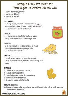 Now that your baby is eating solid foods, planning meals can be more challenging. The following is a sample one-day menu for an eight- to twelve-month-old.