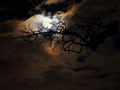 By the Glow of the Moon