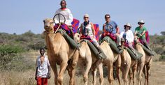 Camel-Assisted Walking Safaris