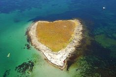 Île de Drénec, archipel des Glénan