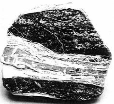 Franklin ore composed of black franklinite and gray willemite is cut by a composite vein comprised of veinlets of willemite (light gray, and white), rhodochrosite (white at lower left), and an impure mixture containing carbonate minerals (dark gray). The visible surface is polished, Specimen is 10 cm in maximum dimension. Smithsonian Institution, #C6603. Photo by the author.