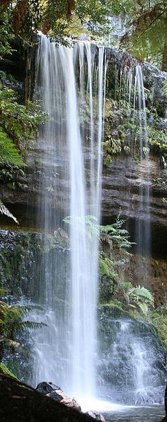 Russell Falls, Mount Field National Park, Tasmania, Australia - by Carl Koenig All Nature, Amazing Nature, Beautiful Waterfalls, Beautiful Landscapes, Tasmania Australia, Australia Travel, Places To Travel, Places To See, Travel Destinations
