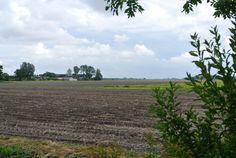 Uithuizermeeden uitzicht richting Eemshavenweg
