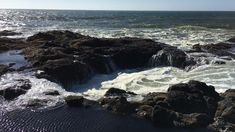 Thor's Well fills and drains - a natural oceanic phenomenon. Coos Bay Oregon, Yachats Oregon, Oregon Dunes, Oregon Usa, Oregon Coast, Thors Well Oregon, Humboldt County, Pacific Coast Highway, Oregon Travel