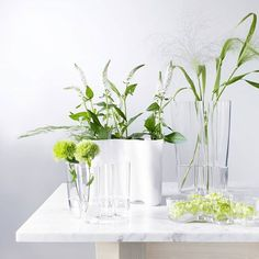 Taking flowers to the next level with Aalto vases by Iittala. Available in our online shop and in-store. #LastMinute #MothersDay #KeepItSimple #GiftIdeas #Vases #Flowers #Vancouver #YVR #BC #Vancity #SouthGranville #white #floral #flowersofvancouver #home #homedecor #interiordesign #pretty #beauty #nature #plants #allwhite #minimal #design #art