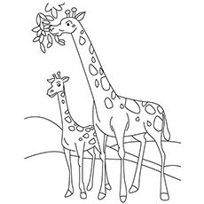 Top 20 Free Printable Giraffe Coloring Pages Online | Pinterest ...