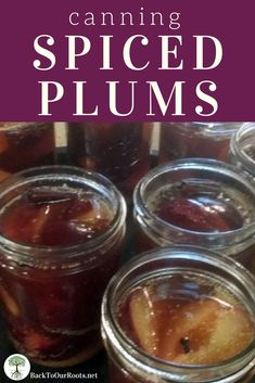 CANNING SPICED PLUMS: Cinnamon and cloves take these plums over the top! Eat them cold, warm, or baked into a cobbler. Come wintertime, you'll be glad you made some today!