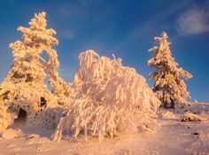 Oh boy, what a light! Lapland Finland, Levi Ski Resort