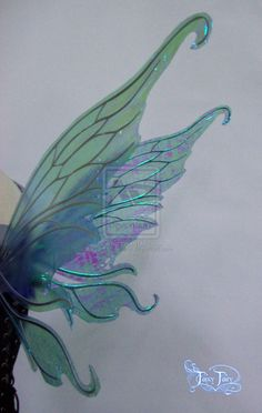 fairy wing structure - Google Search