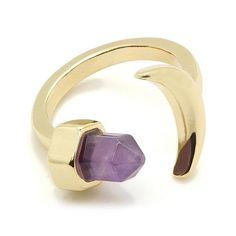 Amethyst Moon Ring - Plugs - Ear Gauges, Flesh Tunnels for Stretched Ears - Jewellery - Ring - 1