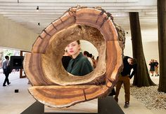 Venice architecture: A hollow tree trunk created by JKMM Architects