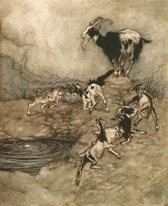 Arthur Rackham - illustration from 'Grimm's Fairy Tales'