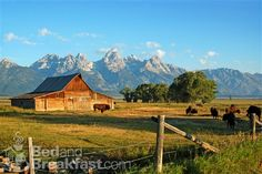 My future home: Wyoming--  most beautiful, bucolic and peaceful place I have ever been..