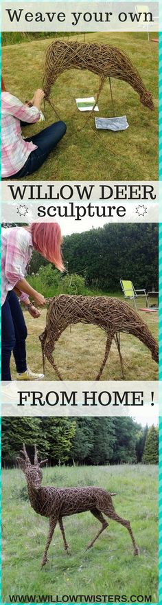 Learn how to make your very own willow deer sculpture in the comfort of your own home or garden! Willowtwisters online sculpture and craft school
