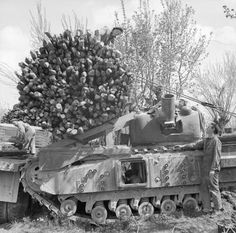 A fascine is loaded onto a Churchill AVRE from a lorry, River Senio, 8 April 1945.