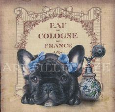 Brindle French Bulldog on Epherma