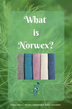 What is Norwex? It s
