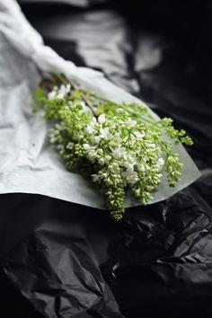 Flowers | Suvi Sur Le Vif / Lily.fi