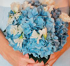 Blue & White Hydrangea Bouquets | Wedding Obsession - Canadian Blog