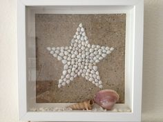 Shells star ikea