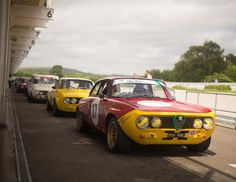 It's always good to see any 60's cars out and about especially at a motor circuit. But these Giulias really are something special to see and hear in the flesh.  #goodwood #classicalfa #classicalfaromeo #alfaromeogiulia #alfaromeo #alfaromeoownersclubuk #canon #sigma #tiffen #50mm #sunny #pitlane #chichester #motorracing #classicmotorsport #retrorides #alfaholics #classicalfa