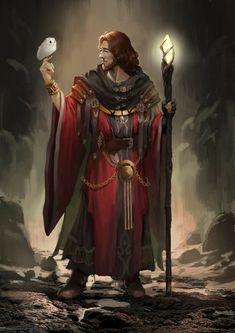 m Wizard Robes Cloak Staff Owl Familiar male Underdark passage Traveler lg Fantasy Male, Fantasy Wizard, High Fantasy, Fantasy Rpg, Medieval Fantasy, Fantasy Art Warrior, Fantasy Witch, Dark Wizard, Fantasy Portraits