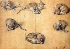 "Thomas Gainsborough, ""Six Studies of a Cat,"" 18th century."
