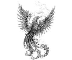 black and grey phoenix