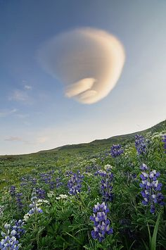 Amazing clouds, Aleutian Islands, Alaska