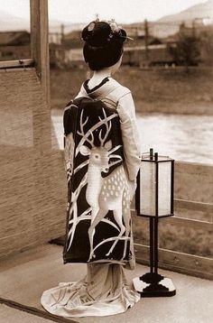 PARTAGE OF JAPAN DREAMS....ON FACEBOOK.......
