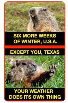 Only in Texas! I miss Texas. Nebraska, Oklahoma, Wisconsin, Michigan, New Jersey Humor, Southern Humor, Southern Belle, Southern Living, Southern Girls