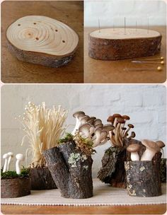 Whimsical Mushroom and Moss Centerpieces Mushroom Crafts, Felt Mushroom, Mushroom Decor, Mushroom Art, Mushroom Lights, Clay Crafts, Diy And Crafts, Arts And Crafts, Paper Crafts